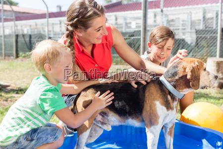 family washing dog in pool of