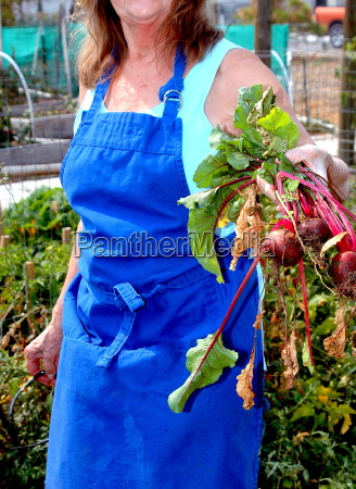 female working in vegetable garden outside