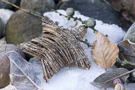 wicker leaf leaves frosty hoar frost