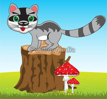 cartoon of the wildlife racoon on