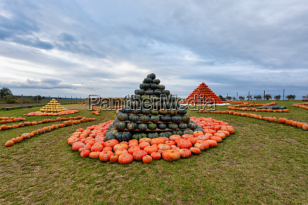 pyramid from autumn harvested pumpkins