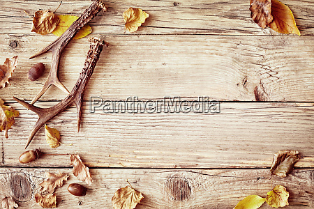 old rustic wood background with antlers
