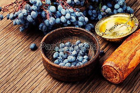 berries in herbal medicine