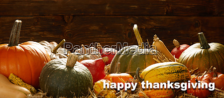 happy thanksgiving cards with pumpkins and