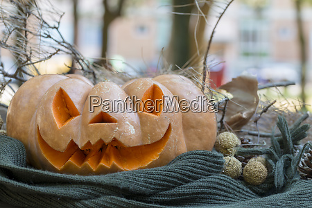 real orange halloween pumpkin with carving
