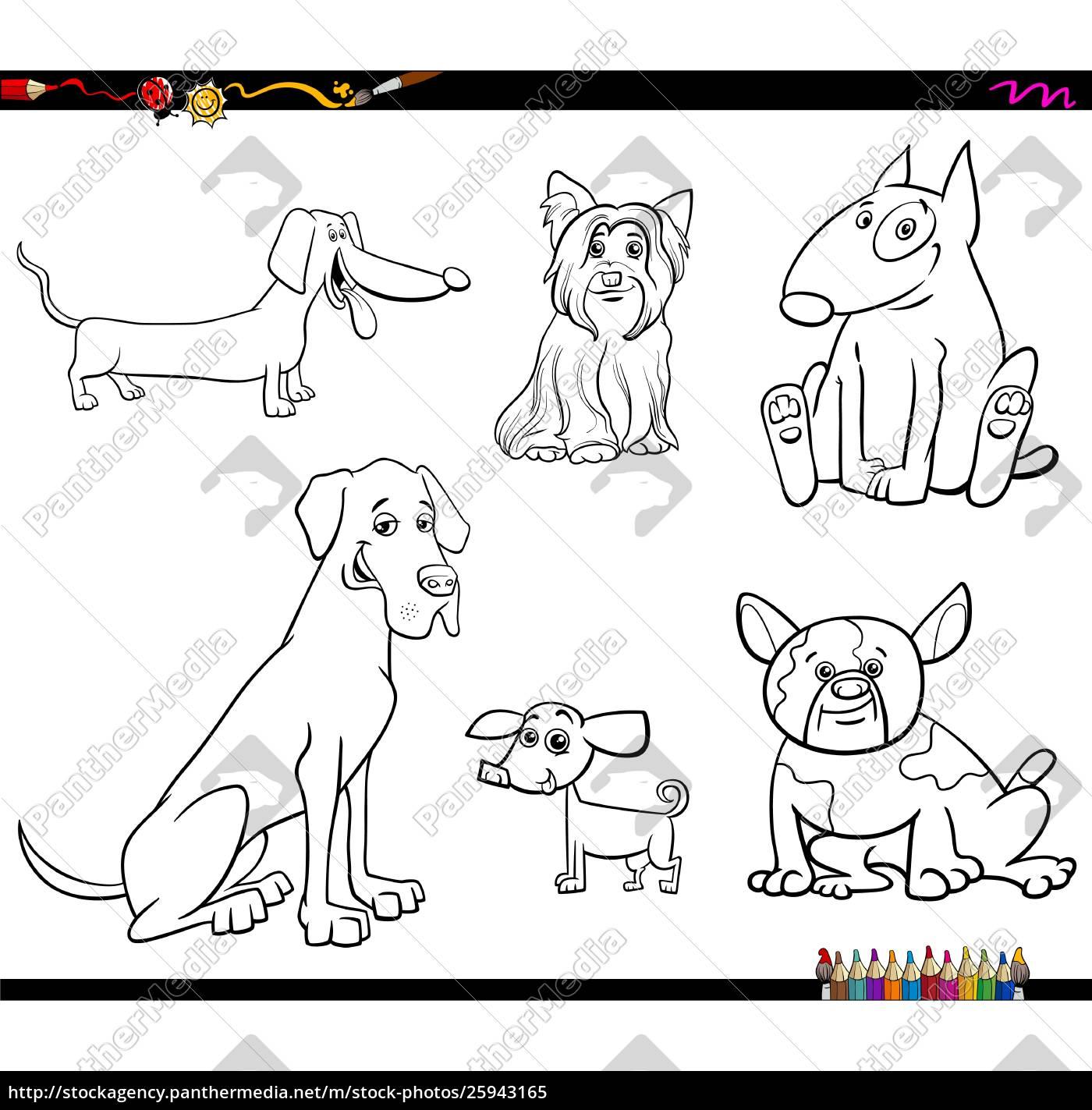royalty free vector 25943165 - cartoon purebred dog characters color book