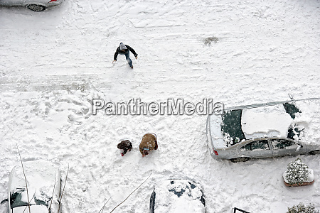 family play in snow around cars