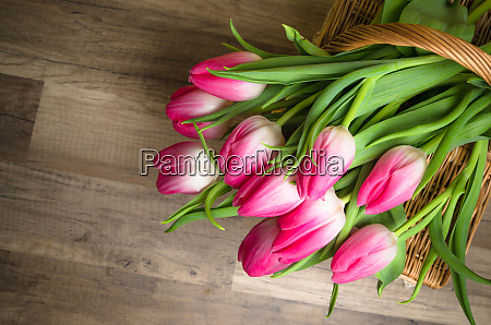 beautiful bouquet from pink tulips