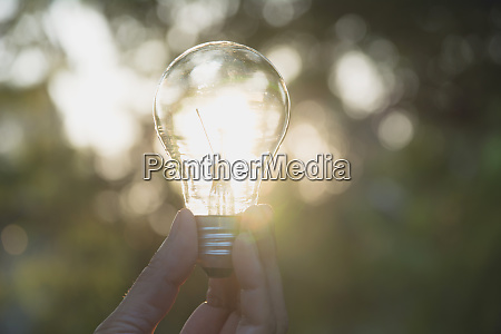 hand of person holding light bulb