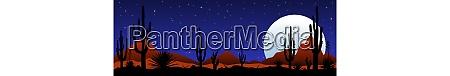 moonlit night in the mexican desert