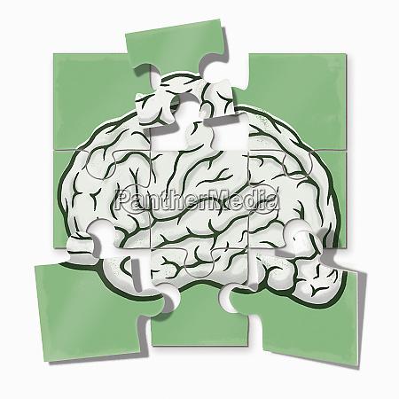 brain jigsaw