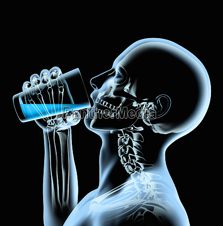 x ray of man drinking from