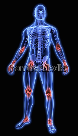 illuminated human joints in blue anatomical