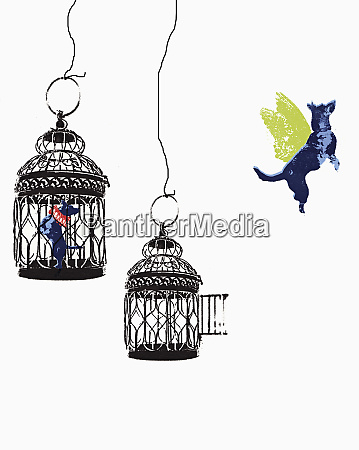 flying dog escaping from birdcage