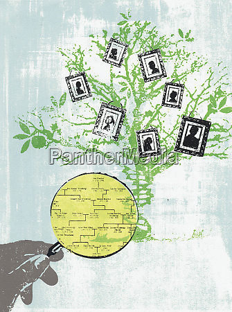 hand, holding, magnifying, glass, studying, family - 26000814
