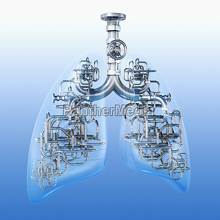 pipes connecting lungs