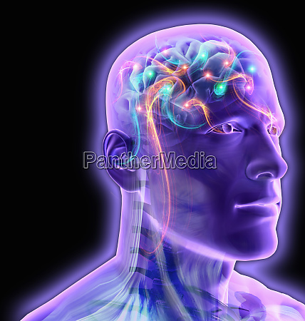 transparent mans brain glowing and sparkling