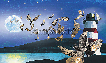 moths attracted to full moon
