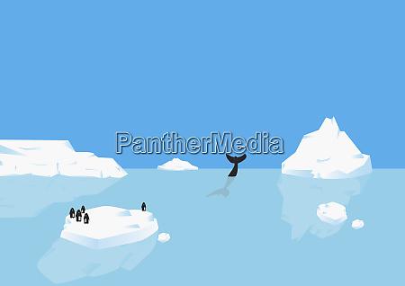 penguins standing on iceberg whale diving