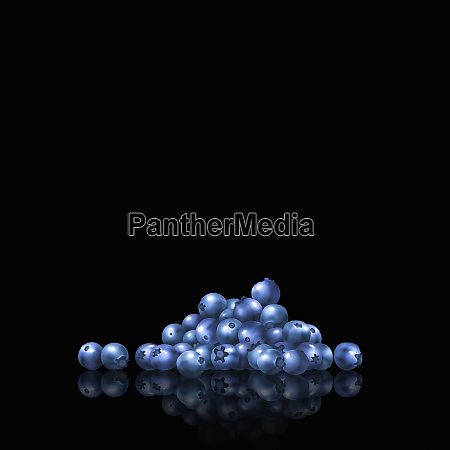 pile, of, blueberries - 26003044