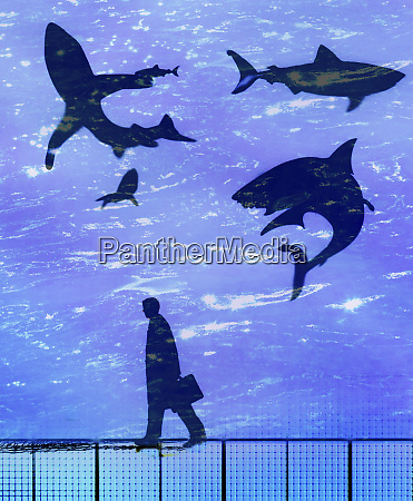businessman walking passed circling sharks