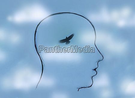 bird flying in blue sky inside