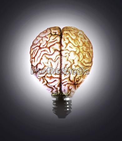 illuminated brain light bulb