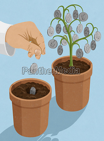 hand planting canadian dollar coins into