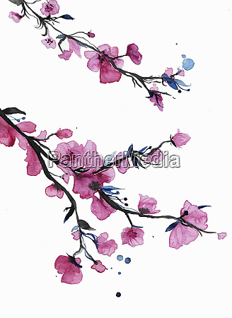 watercolor painting of spring blossom on