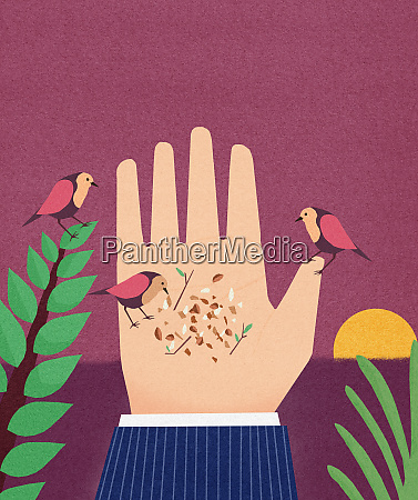 birds pecking crumbs from businessmans hand