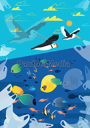 plastic, shopping, bags, polluting, the, ocean - 26014677