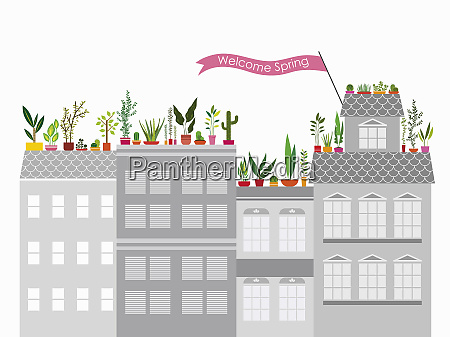colorful spring roof garden on top