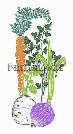 fresh vegetable ingredients