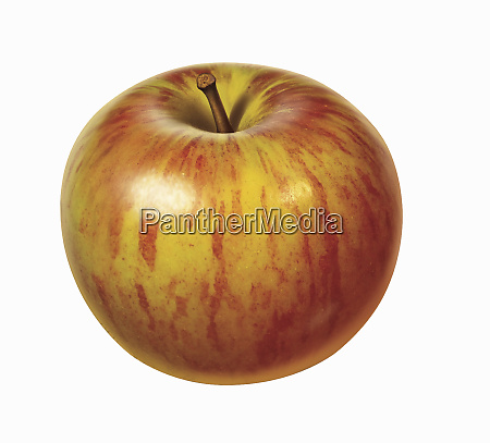 fresh red apple on white background