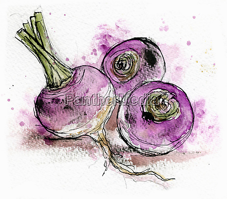 close up of three turnips