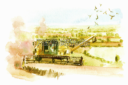 watercolor painting of combine harvester in