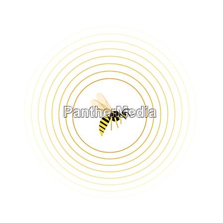 wasp, inside, circle, pattern - 26028157