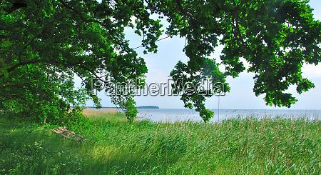 island ruegen baltic sea