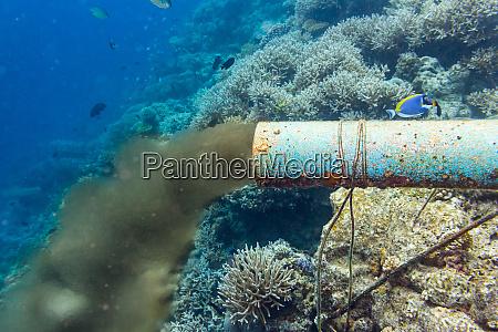 underwater sewer pipe