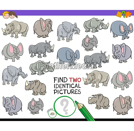 find two identical animal pictures game