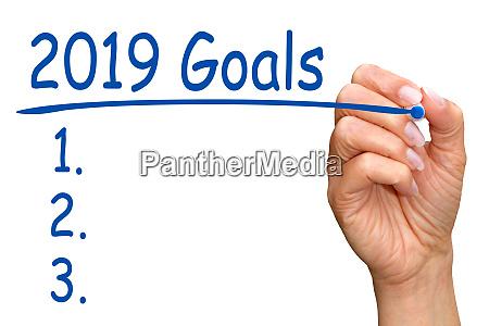 2019 goals and checklist female