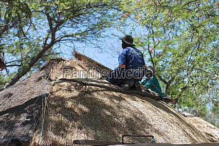 roofer repairs the thatched roof of