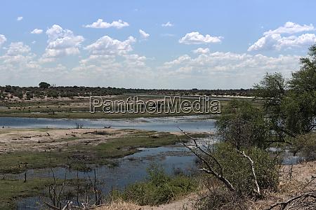 landscape at boteti river makgadikgadi national