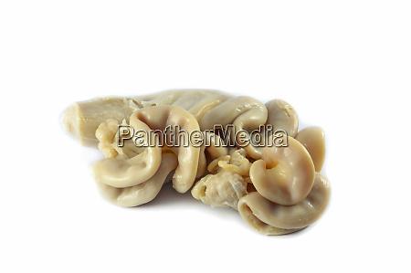 chitterlings pork entrails intestines part