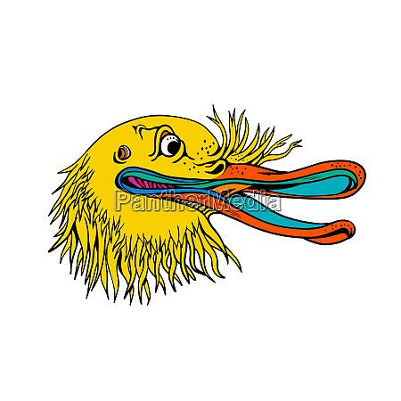 aggressive kiwi bird graffiti color
