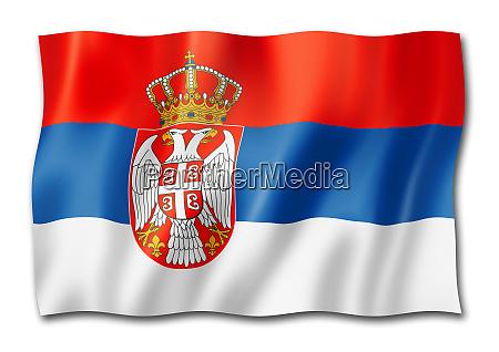 serbian flag isolated on white
