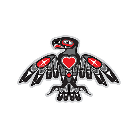 indigenous totem bird spirituality hawk illustration