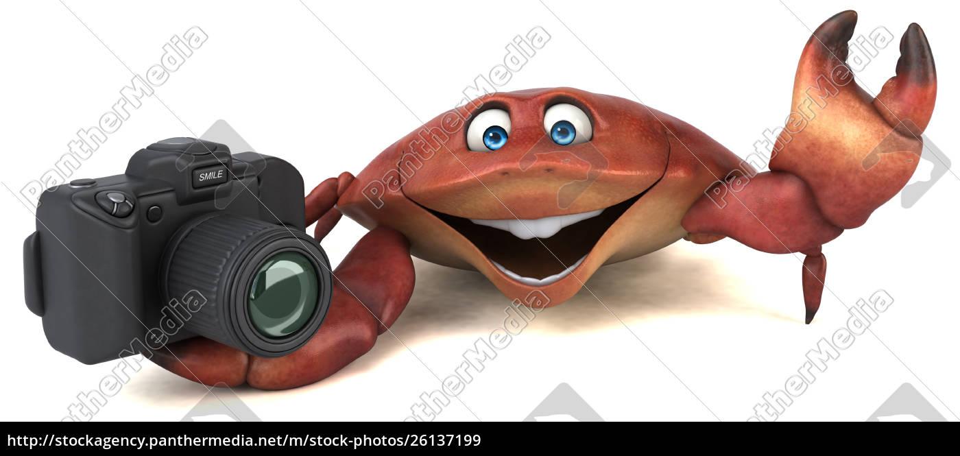 fun, frog, -, 3d, illustration - 26137199
