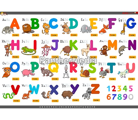 educational, cartoon, alphabet, letters, for, learning - 26142143