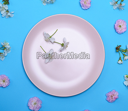 empty round ceramic pink plate on